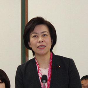 平成30年 第1回定例会総括質疑 甲田 ゆり子議員