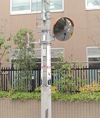 中央2-33宝仙学園付近へカーブミラーの設置